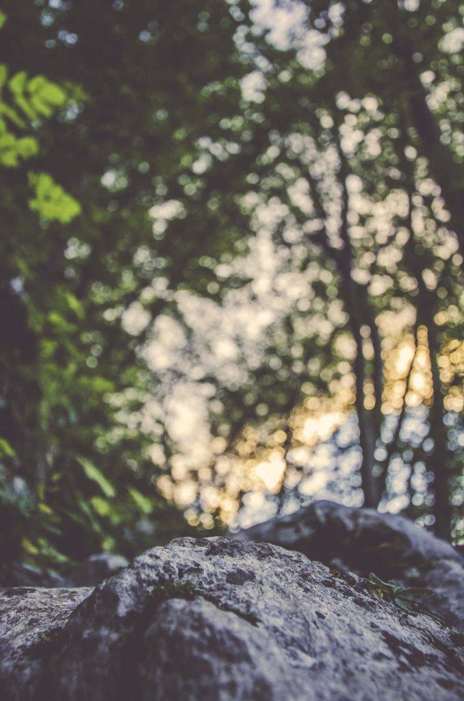 Unsplash-Landscapes-256-678x1024.jpg